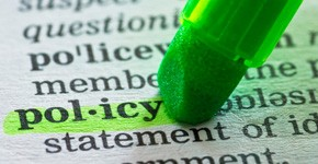 International Policy Work